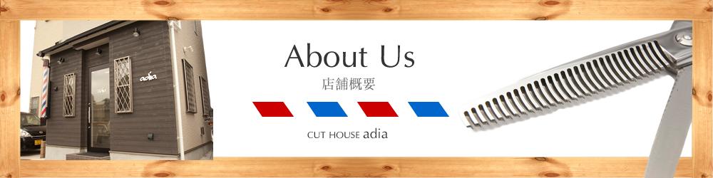 新川崎徒歩2分。鹿島田駅徒歩4分の理容室アディアの店舗概要